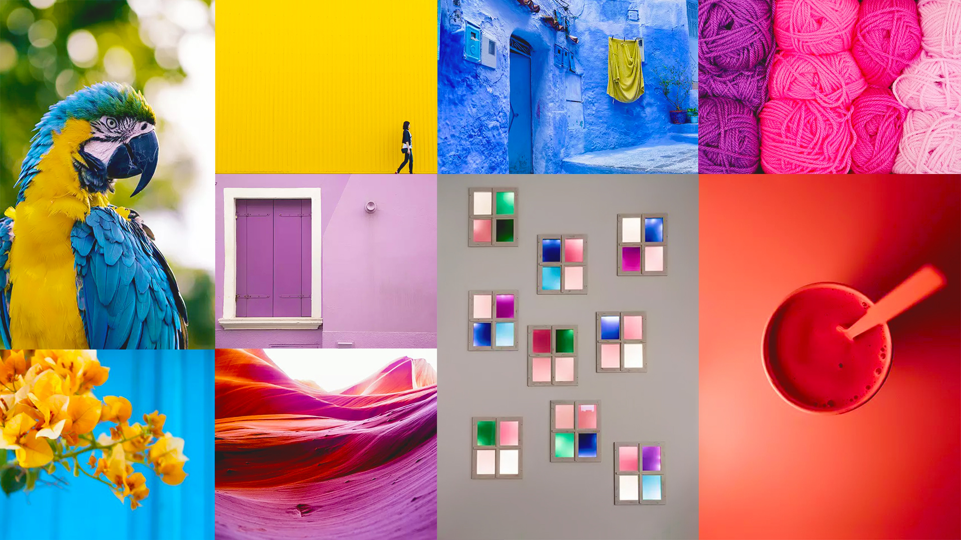 10 Tips For Using Vibrant Colors For Colorful Photography